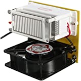 220V 10g/H Ozone Generator Ceramic Plate Sterilizer Fan Air Purifier Machine