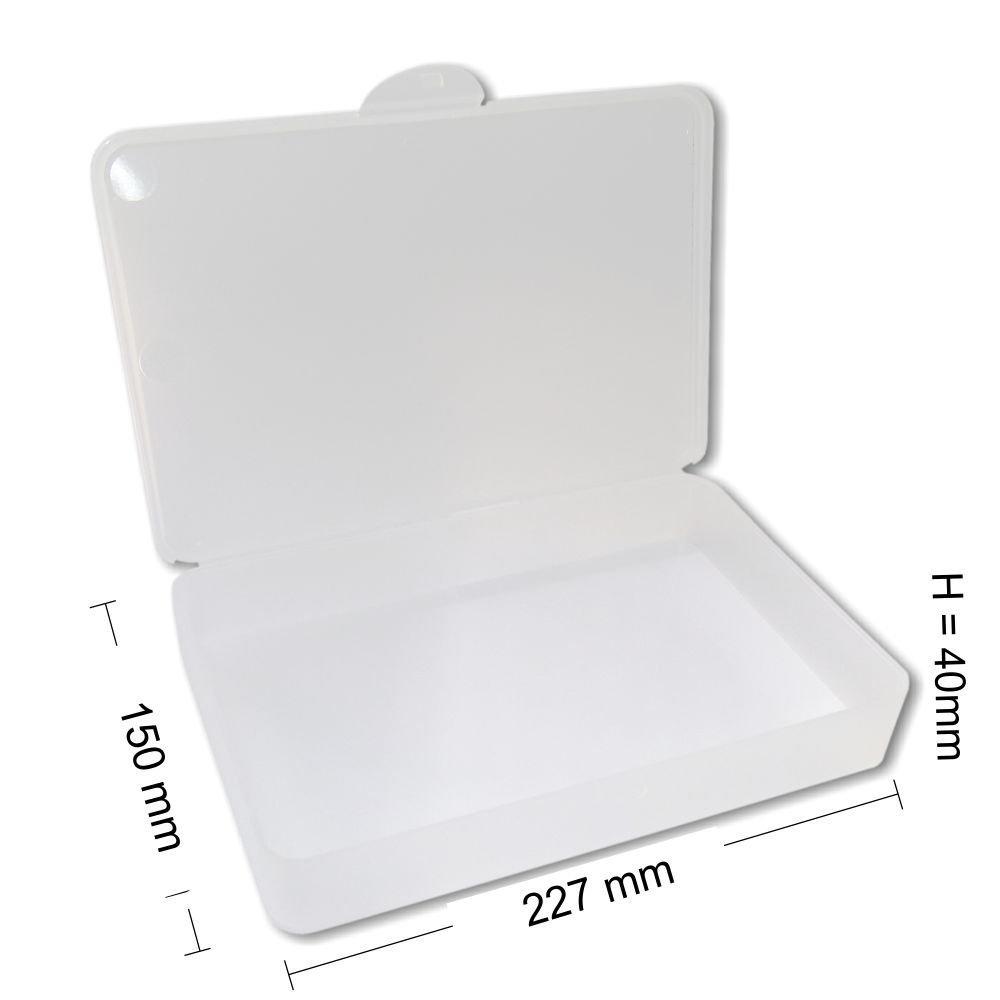 Feilenbox Arbeitsmaterial-Box Hygiene Utility- Box Kundenbox gross L-Case transparent 227x150x40 mm LxBxH NAILFUN ®