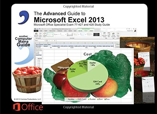 The Advanced Guide to MIcrosoft Excel 2013: Elizabeth Ann Nofs ...