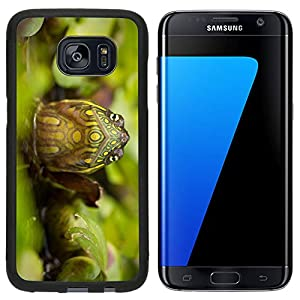Liili Premium Samsung Galaxy S7 Edge Aluminum Snap Case red eared slider turtle in the wild surrounded by typical flora and looking with curiousity to the camera IMAGE ID 11209418