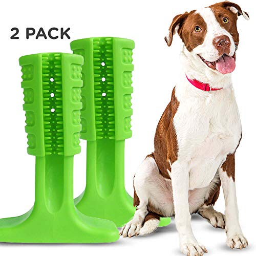 DoggyDental Dog Toothbrush Chew Toy for Easy Teeth Cleaning (2-Pack)