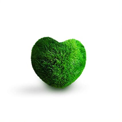 c7a77e81ff6 Luffy Heart Marimo  Unique Heart-Shaped Rare Live Plant That Brings Good  Luck