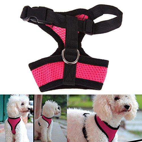 Poppypet Softgeschirr für kleine Hunde, Hunde Brustgeschirr Zum Joggen, Flexible Hundeleine Jogginggürtel Hund Pink