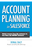 Account Planning in Salesforce: Unlock Revenue from Big Customers to Turn Them into BIGGER Customers (English Edition)