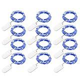 FZZ698 12Pcs 1M 10LED Fairy Lights Battery Starry String Decorative String Light for Darden Party Wedding (blue)