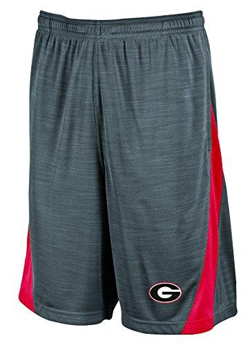 [NCAA Georgia Bulldogs Men's Boosted Stripe Color Blocked Training Shorts, Large, Gray] (Georgia Stripe)