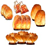 Abundance and Wellness Himalayan Salt Lamp Package Deal (13 Lamps)
