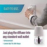 Comfort Zone MultiCat Calming Diffuser Refill for