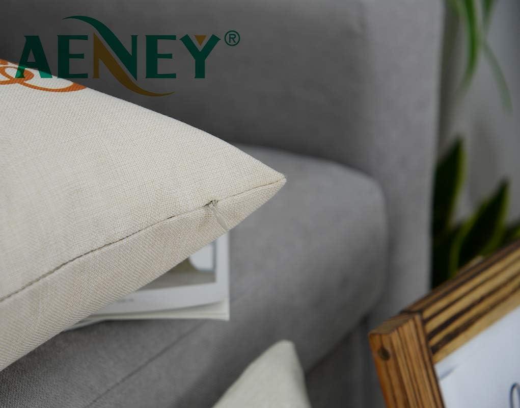 Amazon.com: AENEY - Funda de almohada de 18.0 x 18.0 in ...