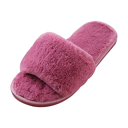Eastlion Autumn And Winter Home Cute Plush Shoes Cartoon Ladies Floor Slippers Style 1 Wine Red MoMMAYZy
