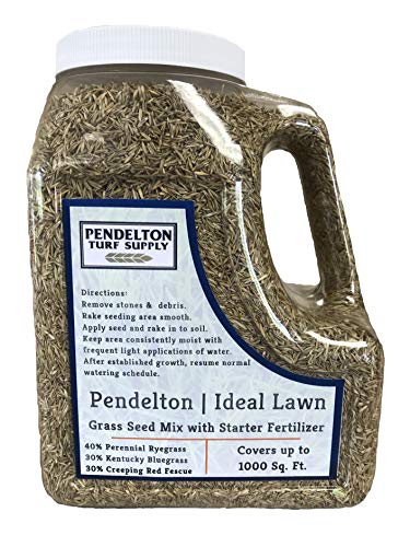 Pendelton Turf Supply | Ideal Lawn Grass Seed Mix with Starter Fertilizer (3 lbs) - 40% Perennial Ryegrass, 30% Kentucky Bluegrass, 30% Creeping Red Fescue