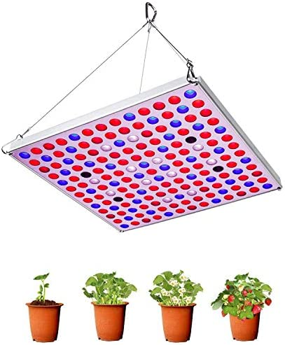Grow Light 75W Full Spectrum Led Plant Light 3500K Sunlike Plant lamp with UV IR Bulbs for Indoor Plants Hydroponics Vegetables Flowers from Seedlings to Flowering Fruiting -Red Blue
