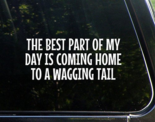 The Best Part Of My Day Is Coming Home To A Wagging Tail- 8-3/4