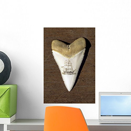 Wallmonkeys A Scrimshaw Carving on a Great White Shark Tooth Wall Decal Peel and Stick Graphic WM160094 (18 in H x 12 in ()