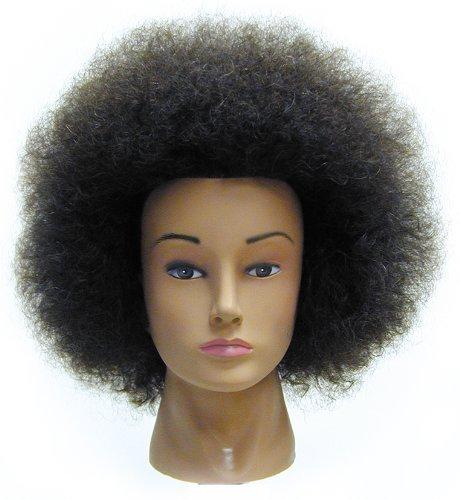Celebrity Naomi Budget Cosmetology Ethnic Human Hair Manikin, Afro