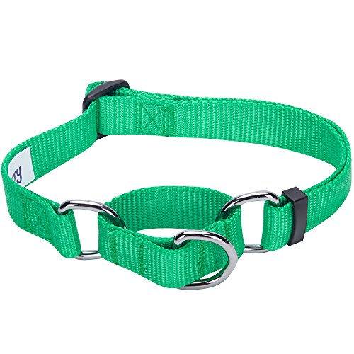 Blueberry Pet 19 Colors Safety Training Martingale Dog Collar, Emerald, Large, Heavy Duty Nylon Adjustable Collars for Dogs
