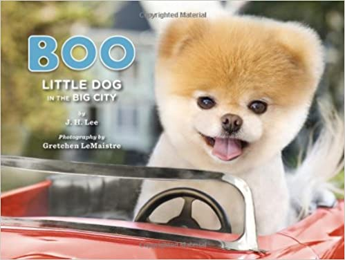 boo dog price in india  Buy Boo: Little Dog in the Big City Book Online at Low Prices in ...