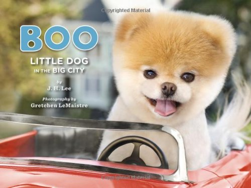 Amazon Com Boo Little Dog In The Big City 9781452109718 J H Lee Gretchen Lemaistre Books