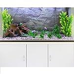 melhores-kits-aquários-completos-para-peixes:.
