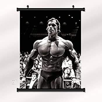 arnold schwarzenegger poster with wall scroll 22 inch x 28 inch