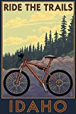 Idaho - Mountain Bike Scene (9x12 Collectible Art Print, Wall Decor Travel Poster)