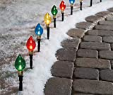 Multi-Color Light Bulb Pathway Markers, 10-Pack