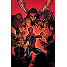 Marvel Knights Spider-Man Volume 3: The Last Stand TPB