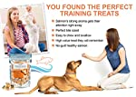 Freeze Dried Salmon Dog Training Treats - Natural Omega 3 and 6 Fish Oil Keep Pets Healthy - Ideal for Small or Large Dogs - 100% Pure Fish With Skin - Gluten Free - Made in USA Only
