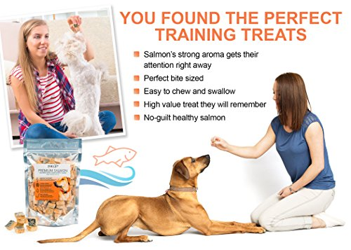 All Natural Freeze Dried Salmon Dog Treats – with Omega 3 and Omega 6 Fish Oil – by IM K9 – 100% Pure Fish with Skin…