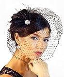 Leslie Li Women's Feather Fascinator & Birdcage Veil One Size Black 21-F32