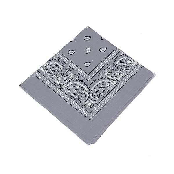 Grey and light baby Blue Bandannas scarf // Hankerchief // Head tie // Neck Tie // Neckerchief 100/% Cotton Pack of 2 Women /& Kids For Men High quality Set of 2 Paisley Bandanas