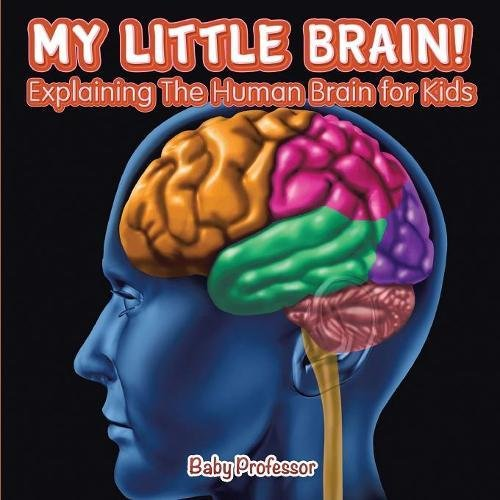 My Little Brain Explaining The Human Brain For Kids Baby