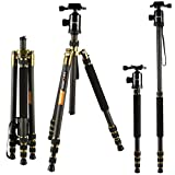 "Carbon Fiber Tripods, K&F Concept TC2534 Lightweight Portable Camera Tripod Monopod Kit 66""/168cm Professional Travel Tripod for DSLR Canon Nikon Simga Tamron Sony"