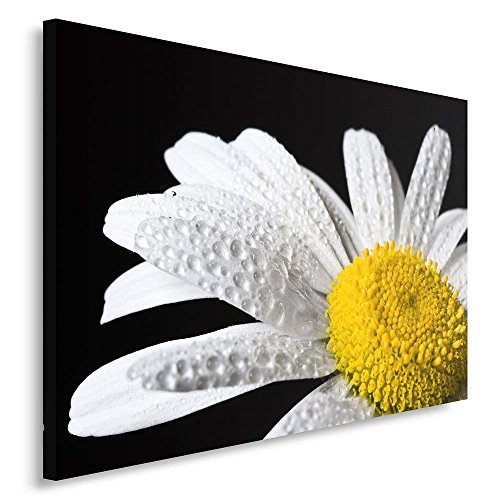 ElijahToby Single Panel Canvas Wall Art Picture Canvas Picture Decorative Picture 40x60 cm Composition Makro Flower Daisies White Yellow - White Single Daisy