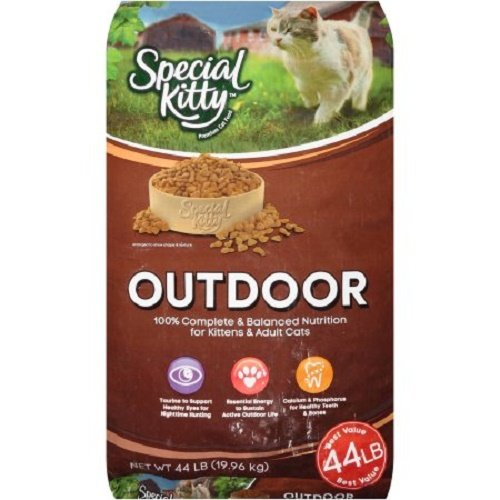 Special Kitty Outdoor 44 Lbs Bag of Dry Cat Food