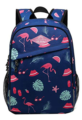 - JiaYou Girls Boys Cartoon Backpack for Kindergarten Primary School with Chest Clip 5-9 Years Old(#1 Flamingo,18L)