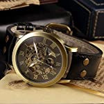 AMPM24 Men's Steampunk Bronze Skeleton Self-Winding Auto Mechanical Leather Wrist Wacth 13