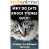 Why Do Cats Knock Things Over?: 33 Bizarre Cat Behaviors -- Explained!
