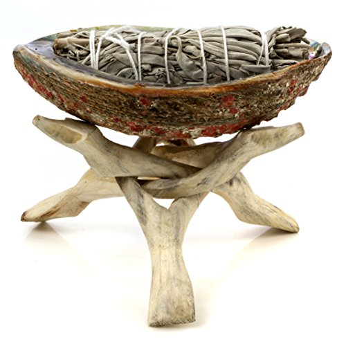 Native Dishes American (Alternative Imagination Medium Premium Abalone Shell with Natural Wooden Tripod Stand and 3 California White Sage Smudge Sticks)