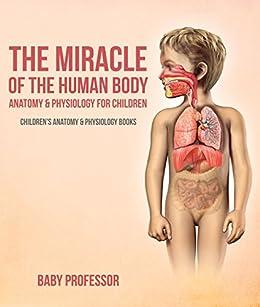 Ebook Anatomy Human Body