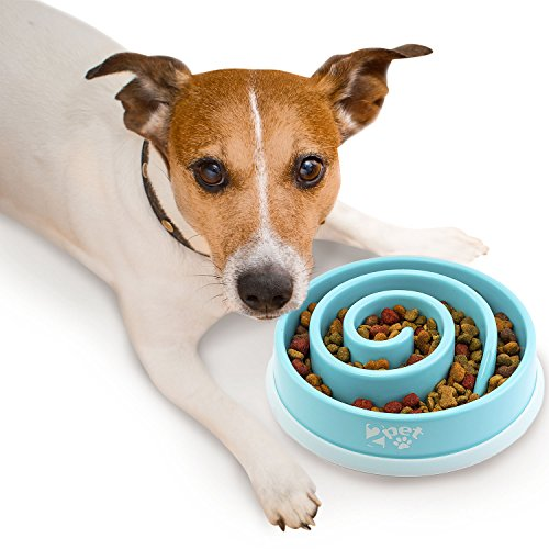 2PET Slow Feed Dog Bowl Slowly Bowly Fun Interactive Dog Dish for Fast Eaters. Prevent Bloating. Fun to Use Dog Bowl…