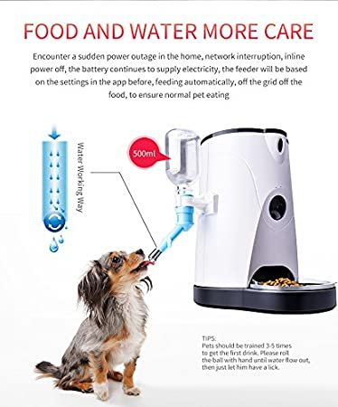 Amazon.com: OMZBM Smart Automatic Pet Feeder Food And Water Dispenser With Real-Time HD Wi-Fi Camera For Dogs & Cats,Two-Way Voice,Timer Programmable For ...