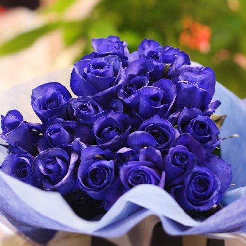 青いバラ ブルーローズ 青ばら10本の花束 キラキラ白いかすみ草付き 生花 花言葉「可能性」「神の祝福」 B00FUXWNDO