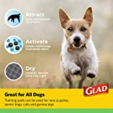 Glad for Pets Puppy Pads | Puppy Potty Training