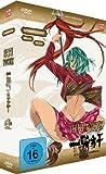 Ikki Tousen - Great Guardians, Gesamtausgabe [4 DVDs]