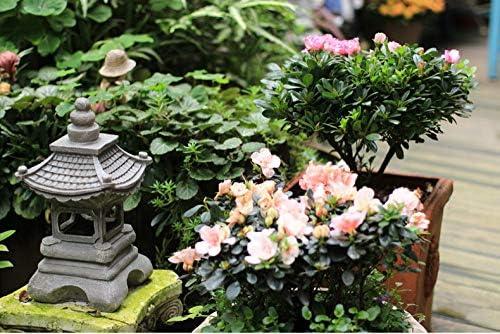 mlhk Estilo Japonés Solar Zen Jardín Luces Linterna Pagoda Luz Solar Jardín Lámpara Estatua: Amazon.es: Hogar