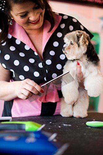 Buy pin brush for dogs