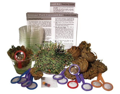 DuneCraft Dinosaur Plant Classroom Kit C (Plant Science Classroom)