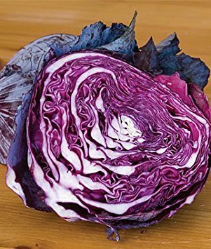 David's Garden Seeds Cabbage Red Express D2076 (Red) 100 Organic Seeds