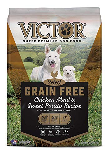 Victor Select – Grain Free Chicken Meal Sweet Potato Recipe, Dry Dog Food